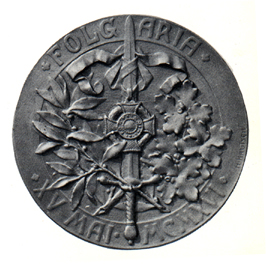 Figure 13: Military Maria Theresia Order Folgaria Commemoration Medal, Reverse, Silver Medal. Image from the authors archive