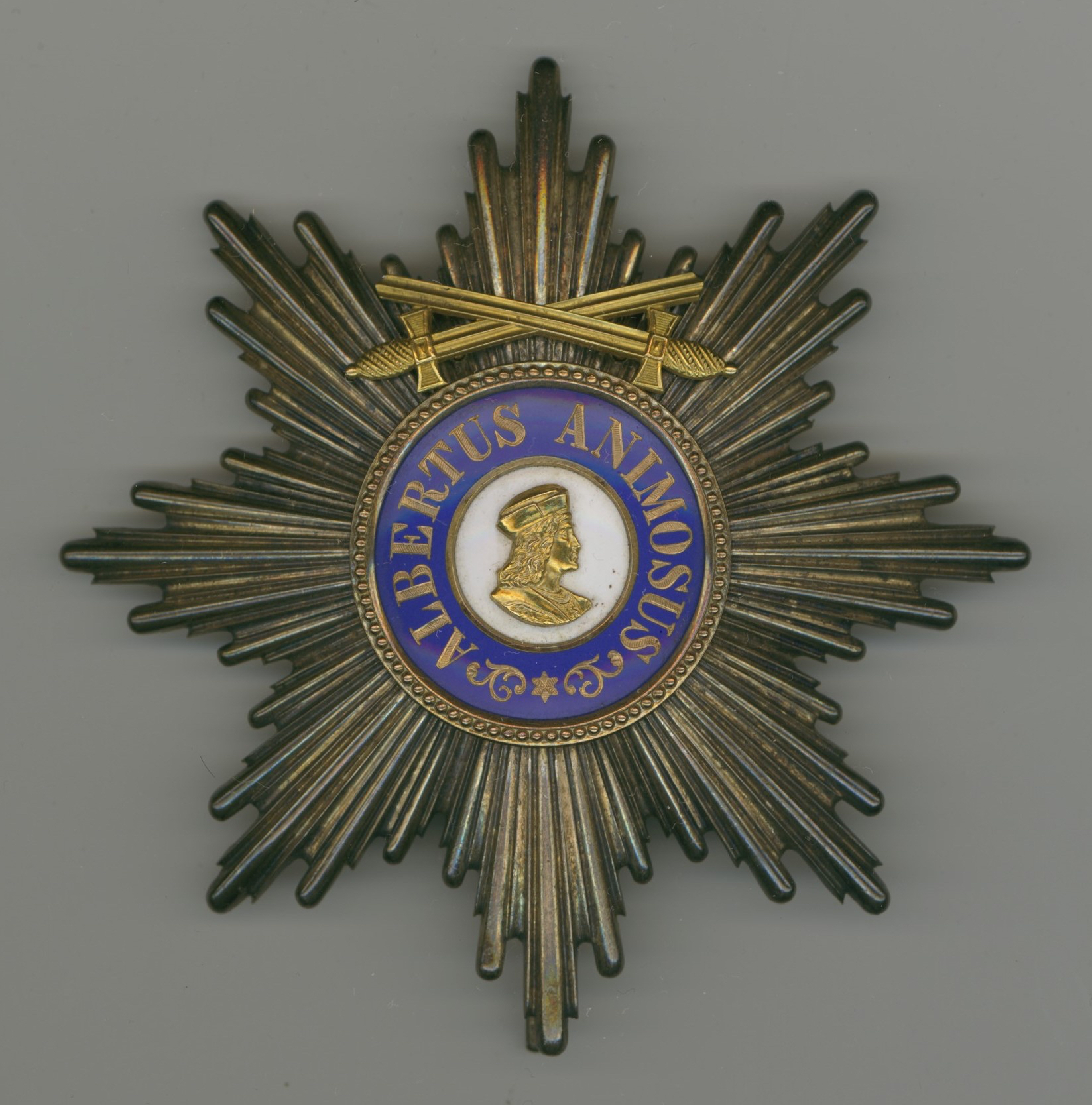 Grand Cross Star with Swords on Ring