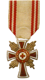 Figure 7: Red Cross Merit Star miniature. Image from the author's archive.